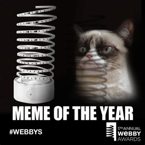 What Year Is This Meme - meme of the year cat meme cat planet cat planet