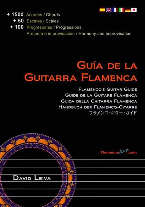 libro the street photographer s manual di david flamenco guitars for left handed persons