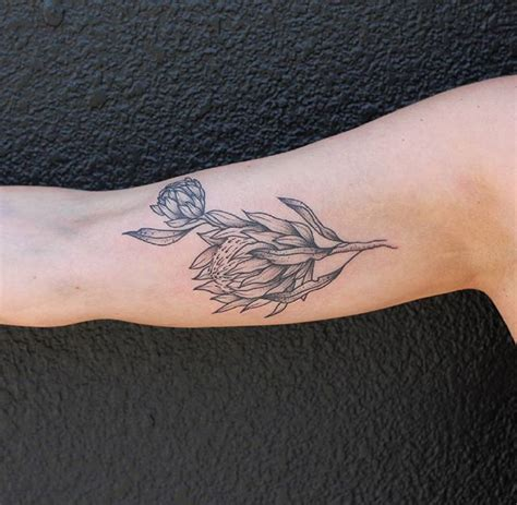 tattoo protea flower 17 best images about tattoo on pinterest watercolor