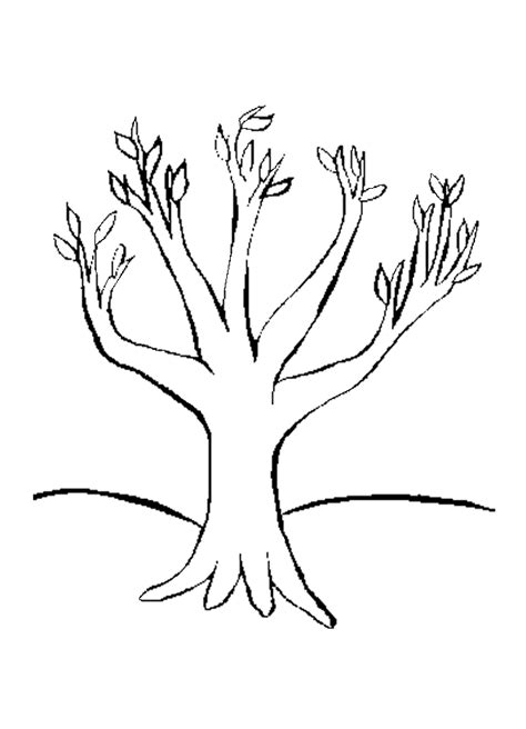 coloring page of a fall tree fall tree coloring pages az coloring pages