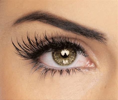 Your Lashes what to do with your lashes botanica day spa