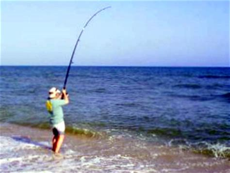 where when and how to catch fish on the east coast of florida classic reprint books how to catch fish on any in the world