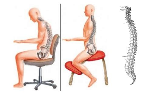 mal di schiena seduto sedie guida completa arredare moderno