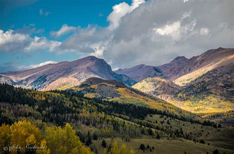 photos of colorado fall colors in pike national forest