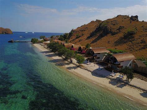 dive resort  komodo flores area diving  indonesia