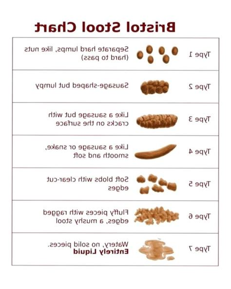 Can Liver Damage Cause Blood In Stool by What Is Narrow Stool Stool Chart For Narrow Stools Not
