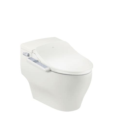 Bidet Definition by Definition Bidet Toilette Integre