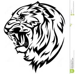 tiger head vector stock images image 29815214