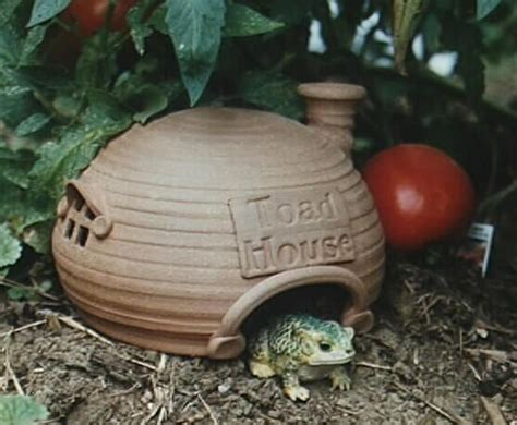 frog house 20 best images about frog houses on pinterest green trees house and handmade ceramic