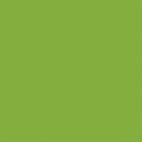 what goes with lime green what colors go with lime green 28 images colors that