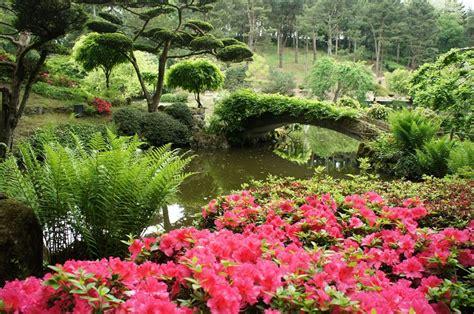 jardin japonais comment en am 233 nager un chez soi