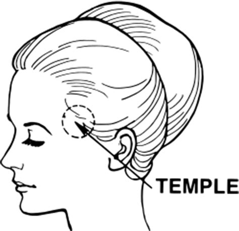 what does temple mean temple anatomy wikipedia