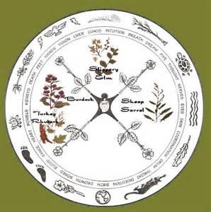 The native american medicine wheel ojibwa tea of life