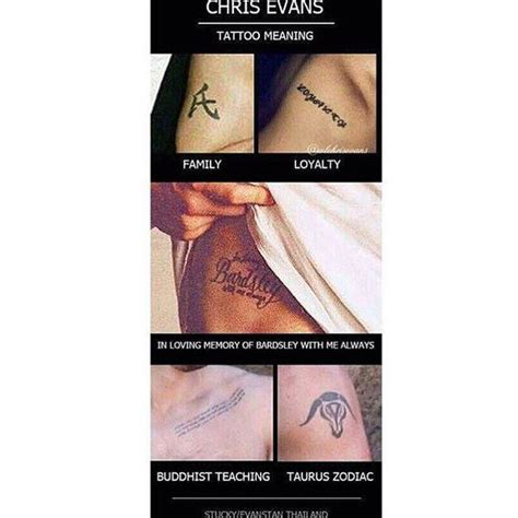 chris evans tattoo removed chris search chris