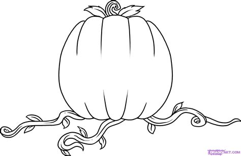 steps on how to a how to draw a pumpkin step by step seasonal free drawing tutorial