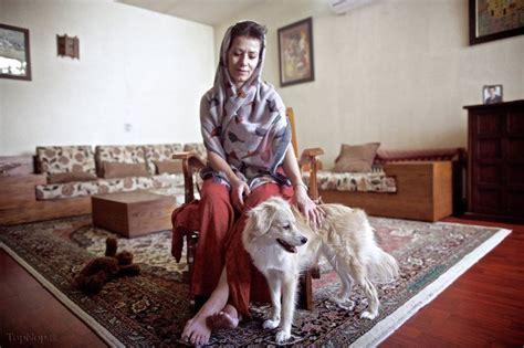 andales dog house ایرانی ها و سگ هایشان