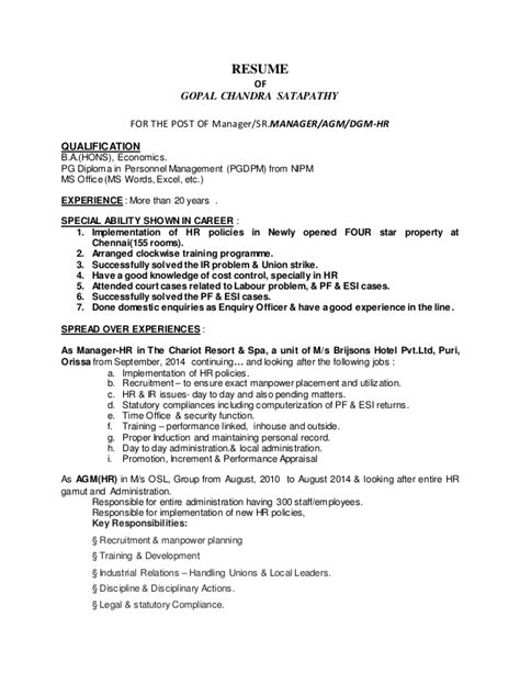 20 years experience resume