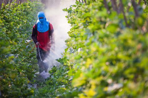 Baygon Flower Garden ekologiskt eller inte daniel kost matkonsult kostekonom se