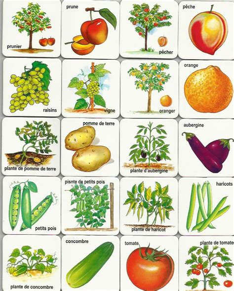 cutting games vegetable free printable memory game learn english pinterest