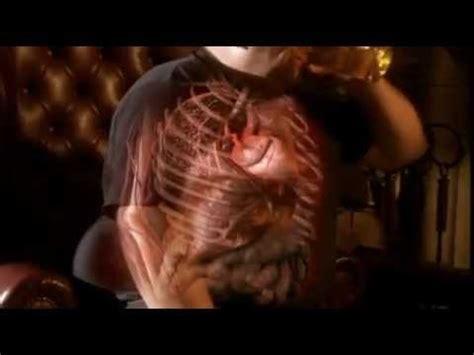 fotos del interior del cuerpo humano viaje al interior del cuerpo humano youtube
