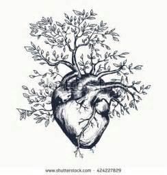 best 25 human heart ideas on pinterest human heart