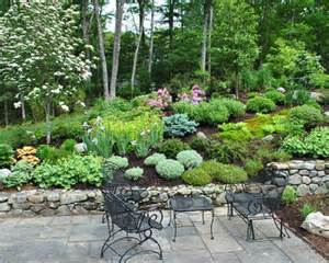 hillside landscaping fayetteville nc health board pinterest landscaping gardens and yards