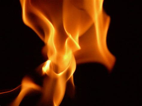 The Place In Flames Meaning Urdu Meaning Of