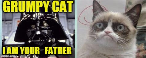 Grumpy Cat Meme Maker - grumpy cats father meme imgflip