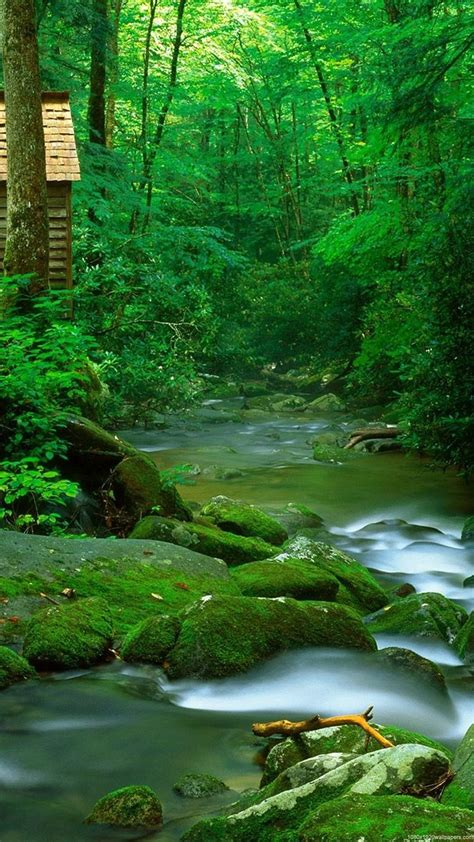 nature wallpaper hd android review http wallpaperformobile org 16454 android nature