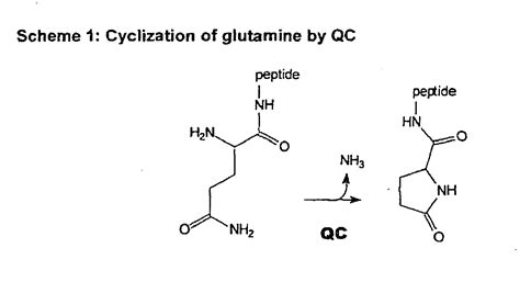 difference between l glutamic acid l glutamine livestrong com patent ep1620091b1 inhibitors of glutaminyl cyclase