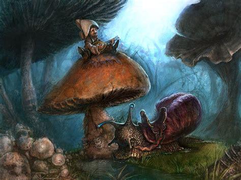 my free wallpapers fantasy wallpaper mushroom bard