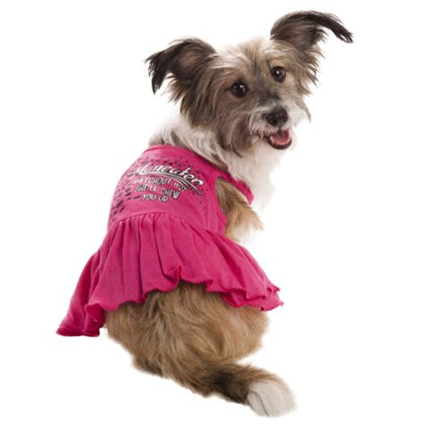 petsmart clothes say it with a song petsmart and lyric culture team up for exclusive ready to wear pet