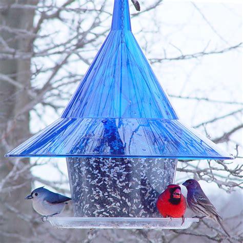 sky cafe bird feeder sapphire blue