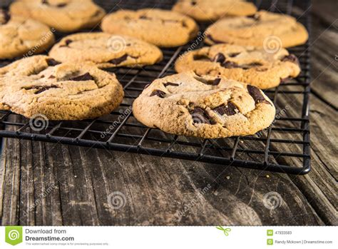 Cooling Racks For Cookies by Chocolate Chip Cookies On Cooling Rack Stock Image Image