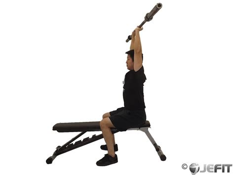 tricep extension bench barbell seated overhead triceps extension exercise
