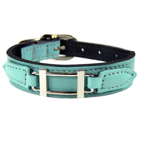 designer collar new designer collars leashes step out in style snazzy
