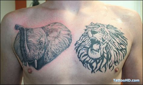 tribal lion chest tattoo elephant images designs