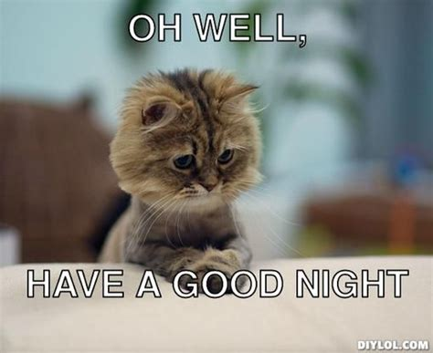 Have A Good Night Meme - 91 best images about goodmorninggoodnight on pinterest