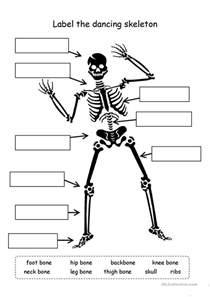 label the skeleton worksheet free esl printable