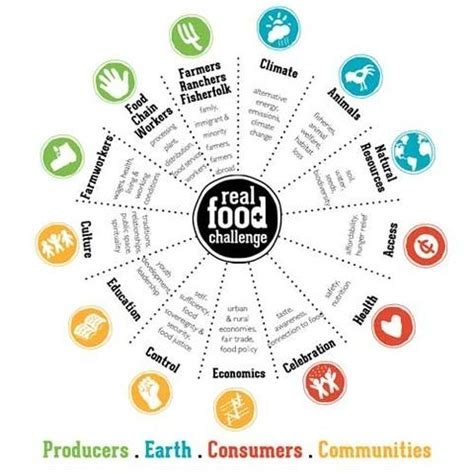 food wheel template food wheel food ideas