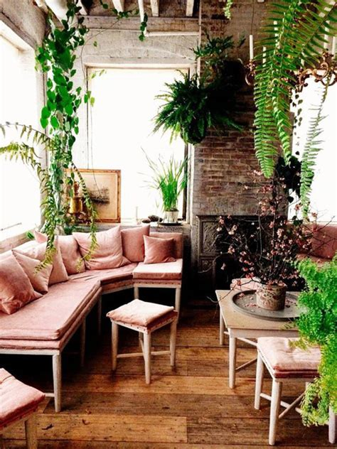 room with plants 10 wonderful rooms with urban jungle home design and