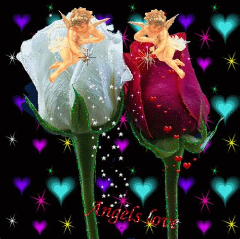felice notte gif 10   gif images download