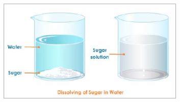 sugar dissolving in water toreto co