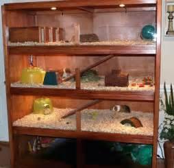 guinea pig hutch plans cavy condo 2 guinea pig cage photos guinea pig