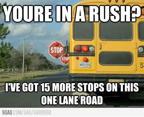 School Bus Meme - 17 best images about bus driver on pinterest bus