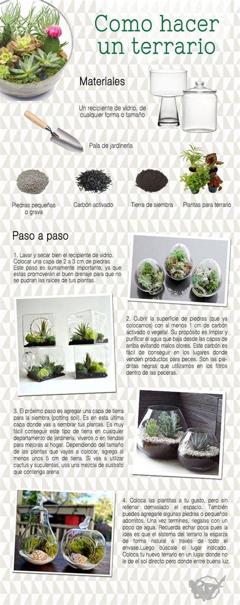 Como Hacer Un Meme Online - las 25 mejores ideas sobre terrario cactus en pinterest y