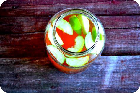 Dr Oz Detox Water Apple Cinnamon by Apple Cinnamon Metabolism Water
