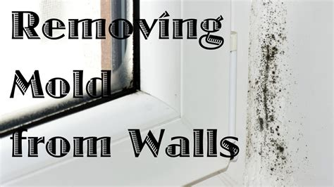 how to remove mildew from ceiling in bathroom removing mold from walls youtube