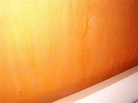 Moisissure Tapisserie by R 233 Ponse Papierpeint Forum Papier Peint Et Tapisserie