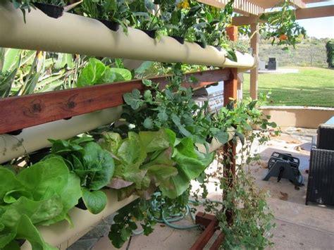 Pvc Garden Ideas 55 Best Images About Garden Pvc On Gardens